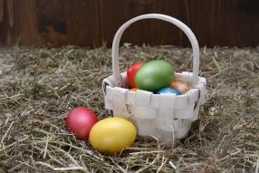 Easter Eggs Easter Easter Nest Egg Decoration
